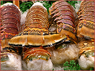 Brazilian Lobster Tails
